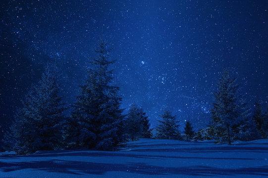 Night winter landscape and stars