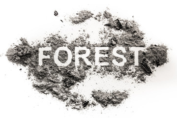 Forest word written in ash as nature catastrophe