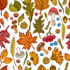 Seamless pattern of leaves, flowers, berries nuts and mushrooms. Vector illustration of autumn flowers and harvest elements isolated on white background.