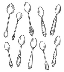Set of spoons, vector hand drawn illustration