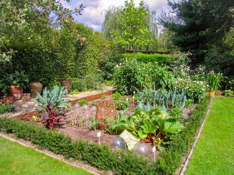 Small European domestic vegetable garden in the backyard in summertime