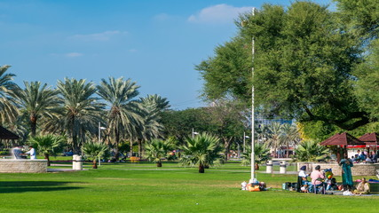 Alley with green lawn and trees at Dubai Creek park timelapse. Dubai, United Arab Emirates