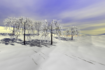 Snowy trees, a winter landscape, beautiful shadows on the white surface and a cloudy sky.
