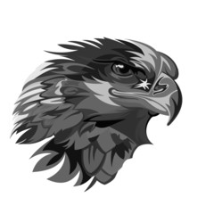 vector template isolated stylized illustration lines abstract head eagle wild animal black white. modern design for apparel t shirt, logo mascot emblem sport - Vector