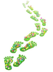 foot print made of green grass  and flowers isolated