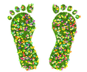 a foot print made of green grass and flowers isolated