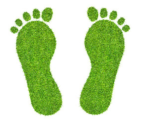 a foot print made of green grass  isolated