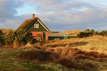Traditionelles Haus mit Reetdach in den Dünen, Nordseeinsel Fanö, Dänemark