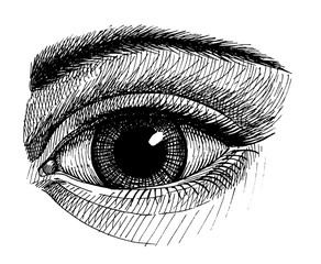 widely open eye, vintage ink hand drawn illustration