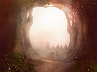 fairy tale background trees forrest sun dust landscape