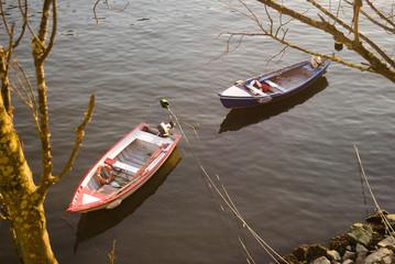 Dois barcos em águas do rio pacificas