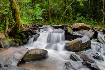 cascata cachoeira brasil