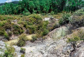Waiotapu Thermal Wonderland - New Zealand