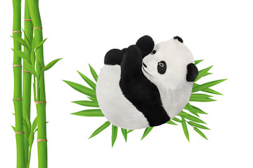 Panda baby and bamboo clip art on white background, template for your cards design, sites and posters