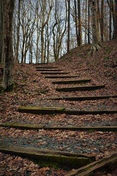 Steps to God's Acre