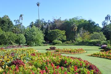 Spoed Fotobehang Oceanië Brisbane Botanic Gardens