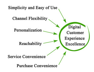 Digital Customer Experience Excellence
