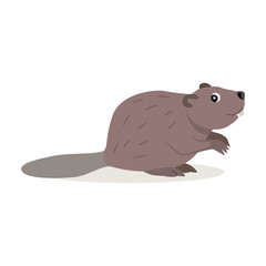 Friendly forest animal, cute brown beaver icon, isolated on white background, cartoon woodland beast, vector illustration
