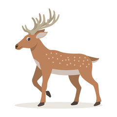 Cute forest animal, cartoon deer with long horns, vector illustration isolated on white background