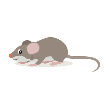 Forest animal, cute small gray mouse icon isolated on white background, funny rat, vector illustration