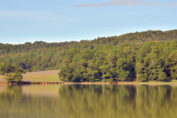 pine forest reflection on the lake at autumn