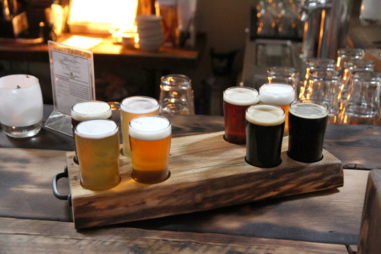 Beer Samples in a Wood Themed Room