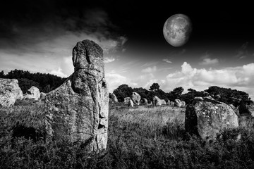 neolitic megaliths - Carnac in Brittany, France Wall mural