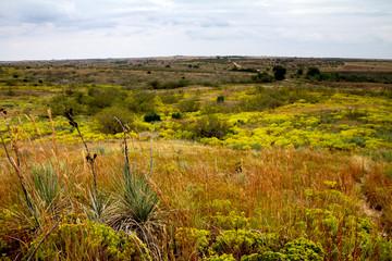 Panorami del Texas e del New Mexico (USA)