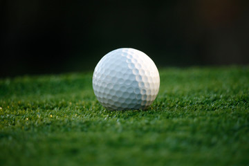 Golf ball on green in beautiful golf course at night background.