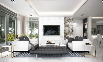 Modern luxury living room interior design