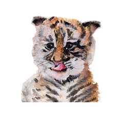 Tiger Watercolor Painting ,Print Wall Art ,Hand painted.Tiger Illustration isolated on white background.
