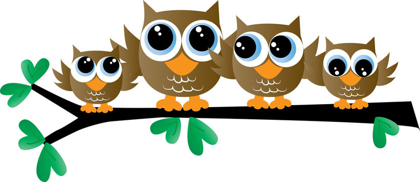 a cute owl family sitting on a branch header or banner