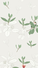 Pattern, background with with feijoa flowers