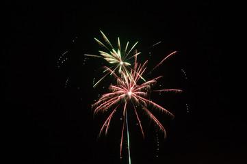 Sparkling fireworks in the black sky.