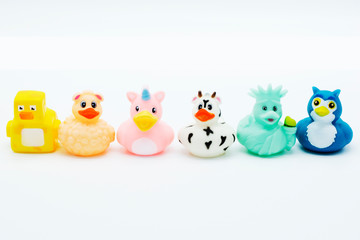 Colorful rubber ducks in a row isolated on a white background.