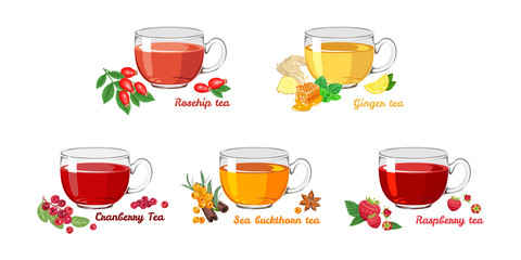 Set of fruit teas in glass cups isolated on white background. Cranberry, rosehip tea, ginger, sea buckthorn, raspberry. Vector illustration of hot drinks in cartoon flat style.