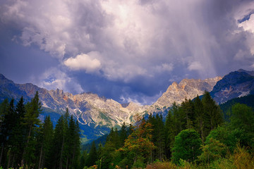 mountain forest landscapes with cloudy sky