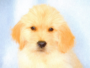 Golden Retriever Puppy Painted on Canvas