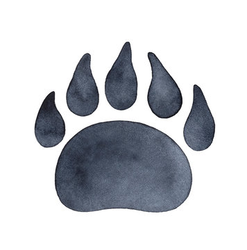 Bear paw print watercolour illustration. Symbol of protection, power, courage, strength, independence. Hand drawn water color drawing on white backdrop, cutout clipart element for design decoration.