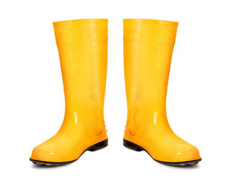 Yellow rubber boots isolated on white background. Dirty boots. ( Clipping path )