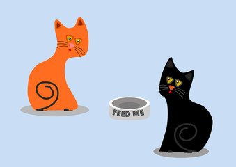 Hungry orange and black cats want to feed them