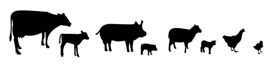 Vector farm animals silhouettes isolated on white background