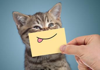 Papier Peint - happy cat portrait with funny smile and tongue