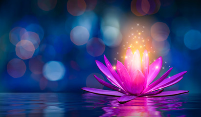 Fotorolgordijn Lotusbloem lotus Pink light purple floating light sparkle purple background