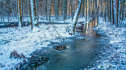 Erstart - Frozen