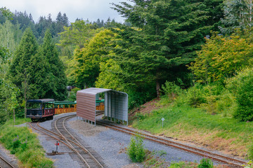 Trains and tracks among trees in Washington Park, Portalnd, USA