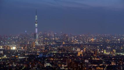 Poster Tokio Tokyo city view with Tokyo sky tree