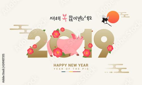 Seollal (Korean lunar new year) vector illustration  2019 with cute