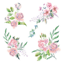 Set of Watercolor hand painted flowers, leaves and plants.
