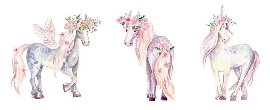 Magic Unicorn, Pegasus and Pony. Watercolor illustration, beauti